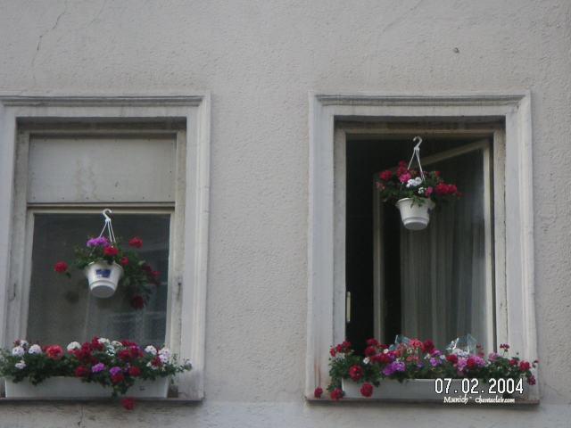 Windows in Munich